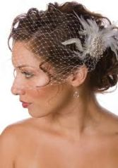 up do with birdcage veil