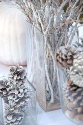 whitepinecones