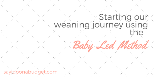 Weaning using the Baby Led Method